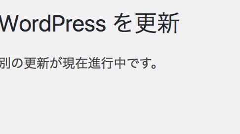 「WordPressを更新 別の更新が現在進行中です。」えっ?何も更新してないけど・・・という時の解決方法